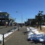 『大磯市』 大磯町で毎月行われる湘南・西湘の見本市