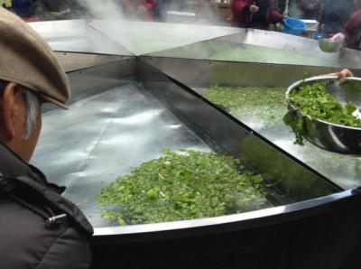 大山菜の投入