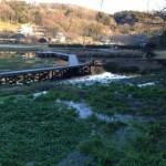 厳島湿生公園 中井町の貴重な観光資産