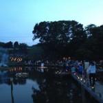 中井町厳島湿生公園 『竹灯籠の夕べ』とホタル