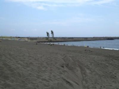 綺麗な砂浜ですね(現実逃避)