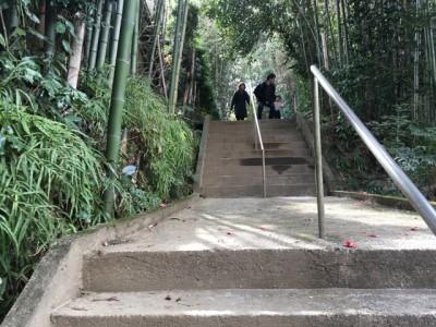 境内の白笹うどん看板を見たら階段を上がる