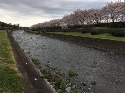 ちなみに雨の降らない日が続くと川に水が無い可能性もあるらしい