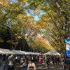 中央通りの模擬店と樹々